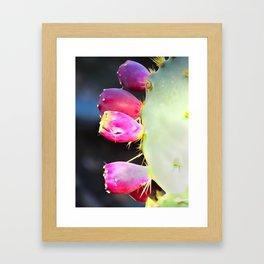 Prickly Pear Framed Art Print