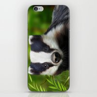 badger iPhone & iPod Skins featuring Badger by Julie Hoddinott