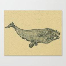 Northern Right Whale Canvas Print