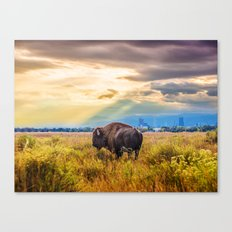 The Great American Bison Canvas Print