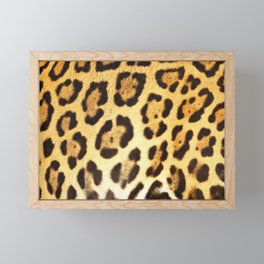 Piel de Jaguar Framed Mini Art Print