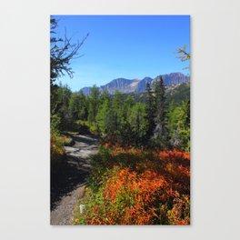 Mountain Meadows - Canadian Rockies Canvas Print