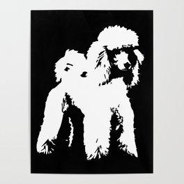 PET POODLE DOG Poster
