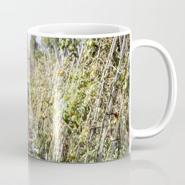 Fresh Tomatoes Coffee Mug