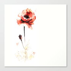 watercolor poppy Canvas Print