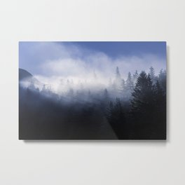 Mist in the Trees of Alaska Metal Print