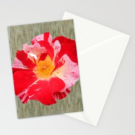 Fourth of July Rose Shabby Chic Print Stationery Cards