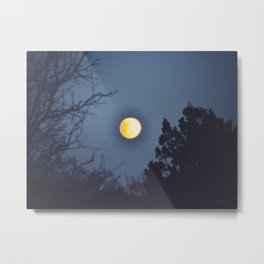 041 | hill country Metal Print