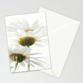 white parasols Stationery Cards