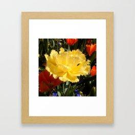 Happy Yellow Tulip Framed Art Print
