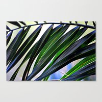 palm Canvas Prints featuring palm by  Agostino Lo Coco