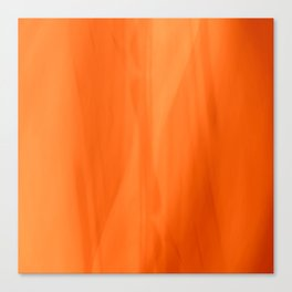 Color Serie 1 orange Canvas Print