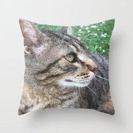 Cat in Clover 1 Throw Pillow