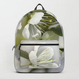 Spring white 044 Backpack