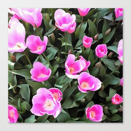 Delicate Pink Tulips Of Istanbul Canvas Print