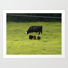 Mama Cow and Her Little Calfs Art Print