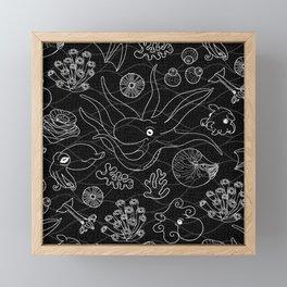 Cephalopods - Black and White Framed Mini Art Print