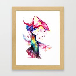 Rainbow Hummingbird in Flowers with Nectar Framed Art Print