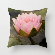 Pink lily rising Throw Pillow
