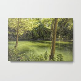 A Magical Place Metal Print