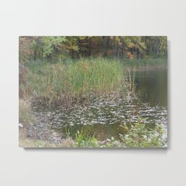 Silence in the Reeds Metal Print