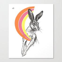 Rainbow Collection / rabbit Canvas Print