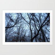 Winter Gloom Art Print