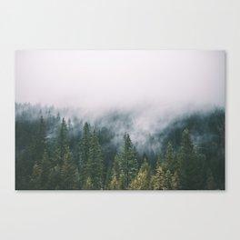 Forest Fog XI Canvas Print