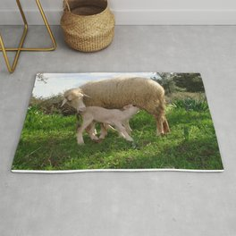 Lamb Suckling From An Ewe Rug