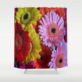 Colorful Gerbera's Shower Curtain