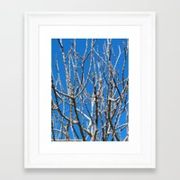 fig Framed Art Prints featuring Fig by aeolia