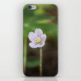 Wood Sorrel Flower iPhone Skin