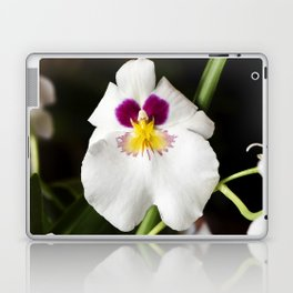 Pansy Orchid Laptop & iPad Skin