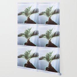 SAGO Palm Wallpaper