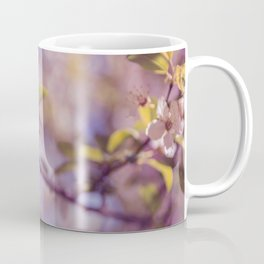 Spring Flowers, Sakura Photography Coffee Mug