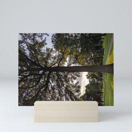 Golden Hour Perspective Mini Art Print
