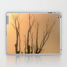 Spiritual trees Laptop & iPad Skin