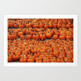 More than a peck of pumpkins at Peck's Produce Farm Market! Art Print
