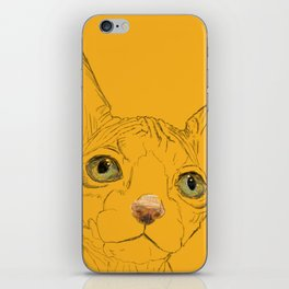 Sphinx iPhone Skin