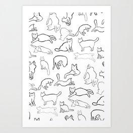 Monochrome cats Art Print