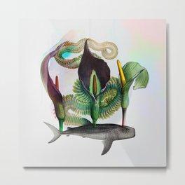 Rhinodon arum Metal Print