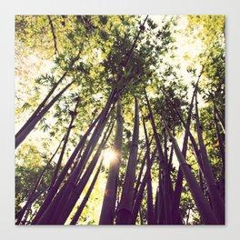 bamboo dreams pillow case Canvas Print