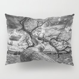 Follow Me Pillow Sham