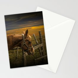 Saddle Horse on the Prairie Stationery Cards