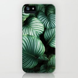 Baby leaves iPhone Case
