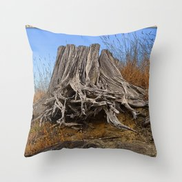 WEATHERED STUMP AND ROOTS ON BEACHSIDE BLUFF Throw Pillow