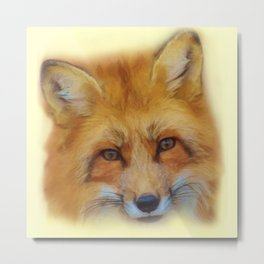Fox in a close-up Metal Print
