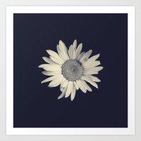 daisy Art Prints featuring Daisy  by Marianne LoMonaco