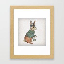 Winter Rabbit Framed Art Print
