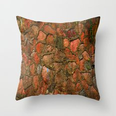 Grunge Wall Throw Pillow